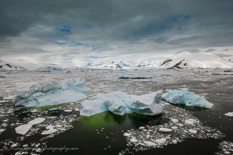 Antarctic-22