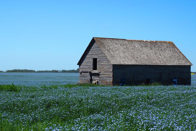 Saskatchewan 26.jpg