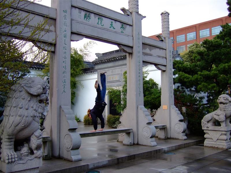 Tracy Mcfarlane - Chinese Gardens - Portland, Oregon