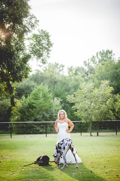 2014 09 14 Waddle Wedding - Bride and Groom-893.jpg