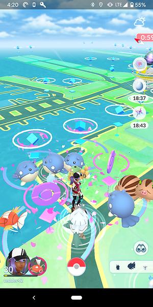 So many Pokemon in Auckland!