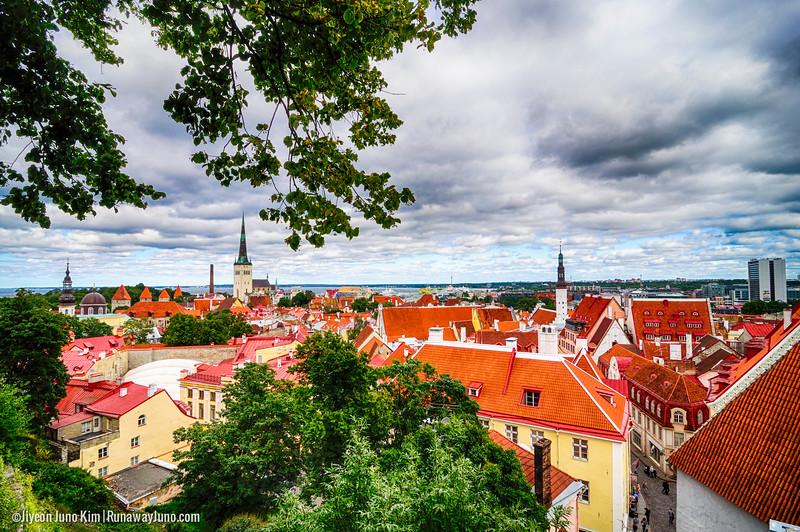Tallinn-.jpg