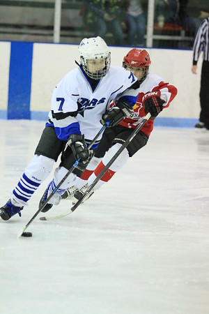 Game 3 - Grand Valley Vs Port Huron Flags