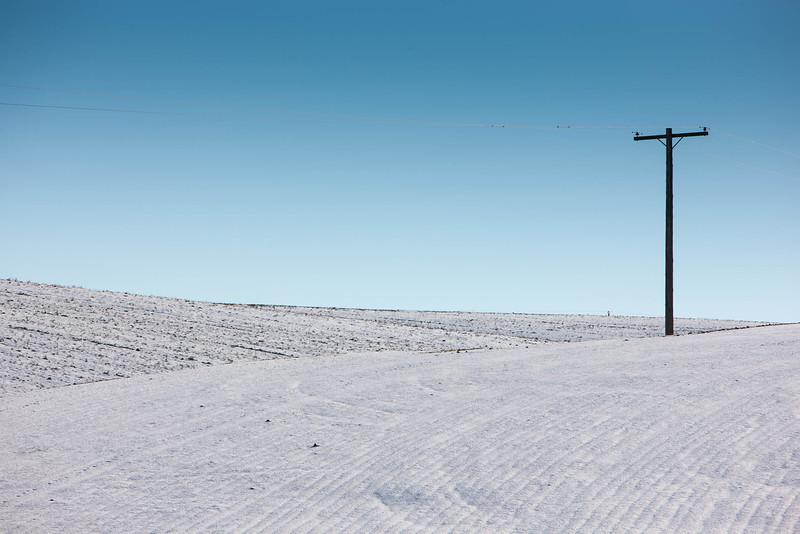 Lone Telegraph Pole