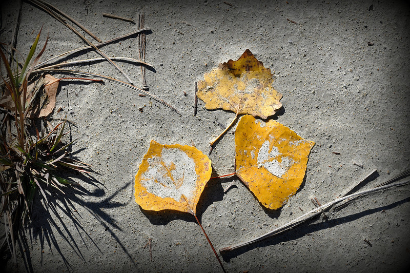 sandscape 10-26-2012.jpg