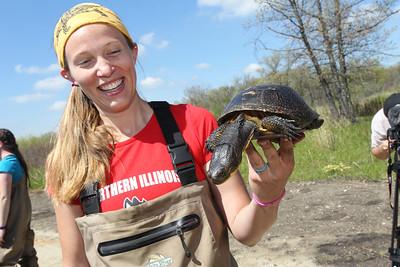 052918 LCJ Turtle Recovery (CJ)