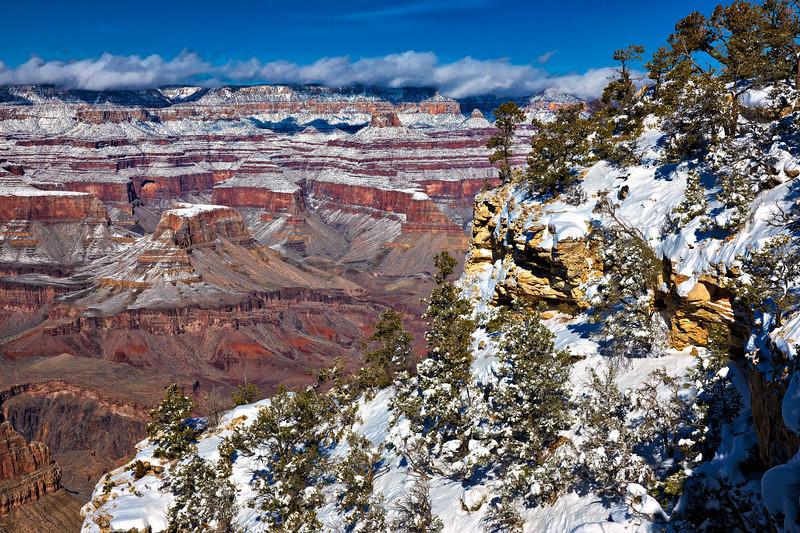 9031 Grand Canyon