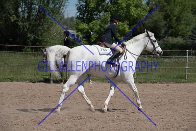 Colorado Stock Horse June 4th 2017