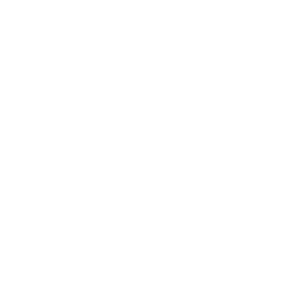 Skin City Logo White