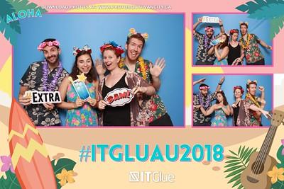 IT GLUE - Hawaiian Luau Party