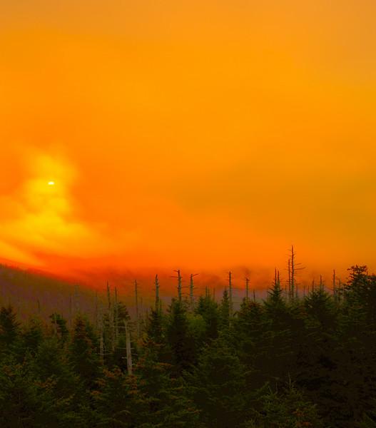 Smoky Mountains 93