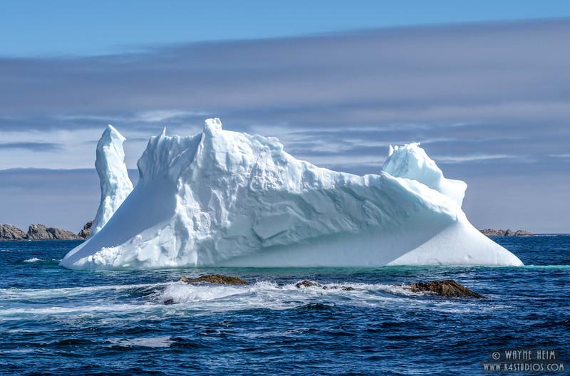 Iceberg 40   Photography by Wayne Heim