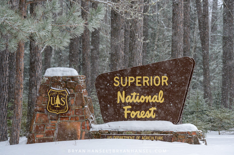 Welcome to Superior National Forest