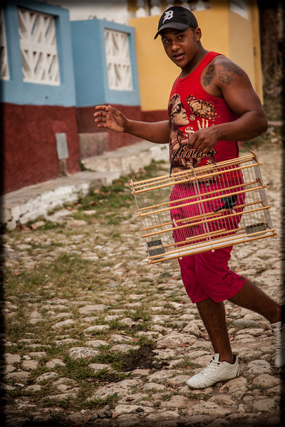 Cuban men and their birds... it's a national obsession.