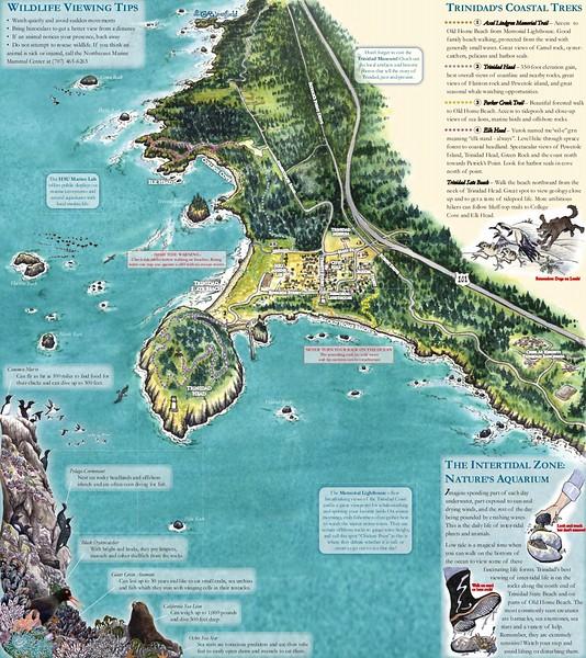 California Coastal National Monument (Trinidad Area)