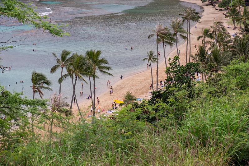 #564 Hawaii Cruise SD #1 Oahu (April 2018) L1 -89.jpg