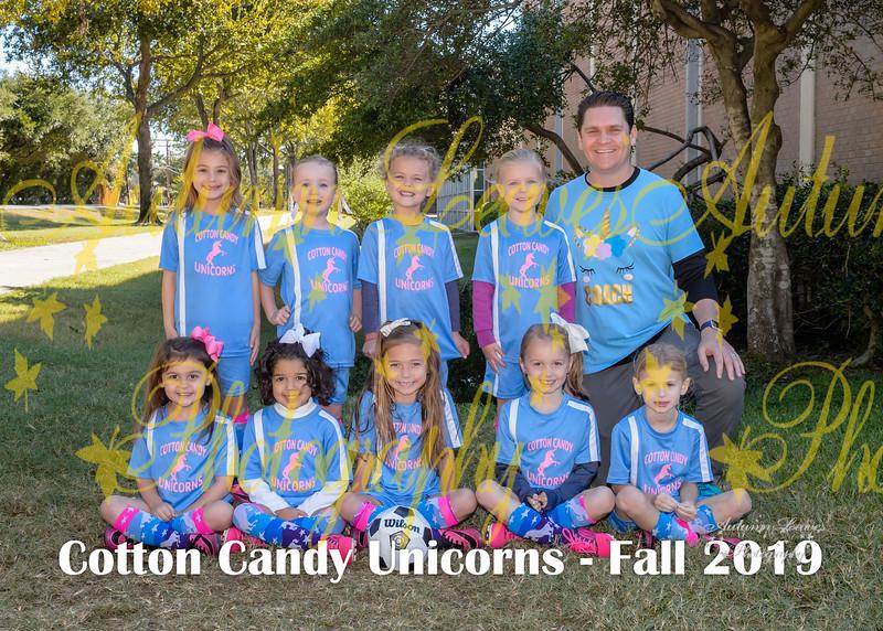 20191012 -#S6 KG Cotton Candy Unicorns