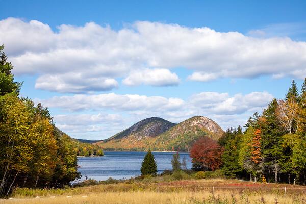 2020 Acadia fall favorites