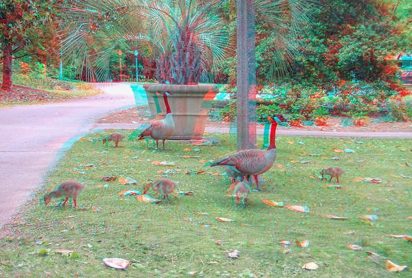 Aldridge Gardens, Birmingham, AL
