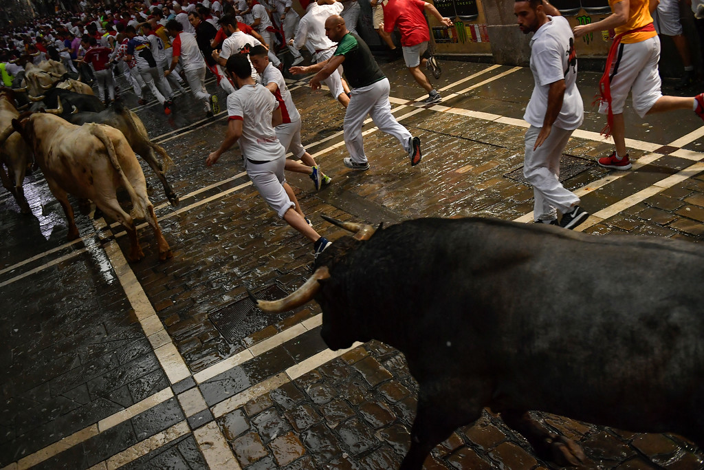 . Revellers run next to a fighting bull from the Jose Escolar ranch and a steer during the second day of the running of the bulls at the San Fermin Festival in Pamplona, northern Spain, Sunday, July 8, 2018. Revellers from around the world flock to Pamplona every year to take part in the eight days of the running of the bulls. (AP Photo/Alvaro Barrientos)