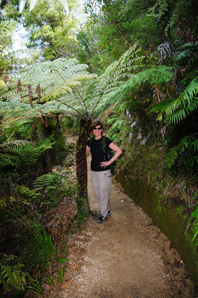 Day hike in Able Tasman