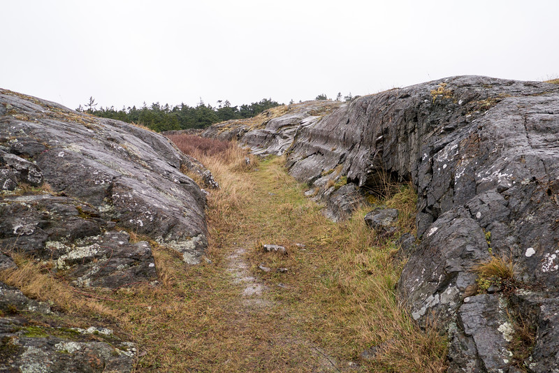 Scour Marks Left by the last Ice Age