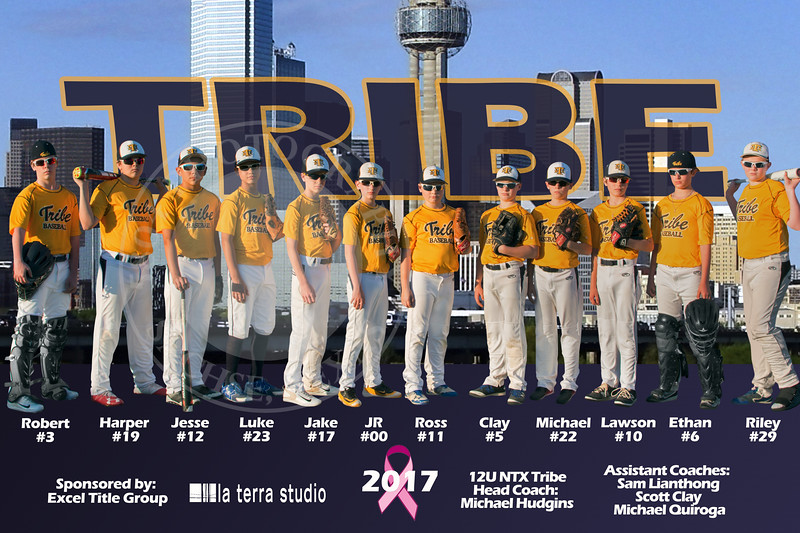 Tribe 12U - Banner Proofing