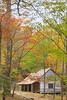 "Noah ""Bud"" Ogle Place, Great Smoky Mountains National Park, Tennessee, USA"