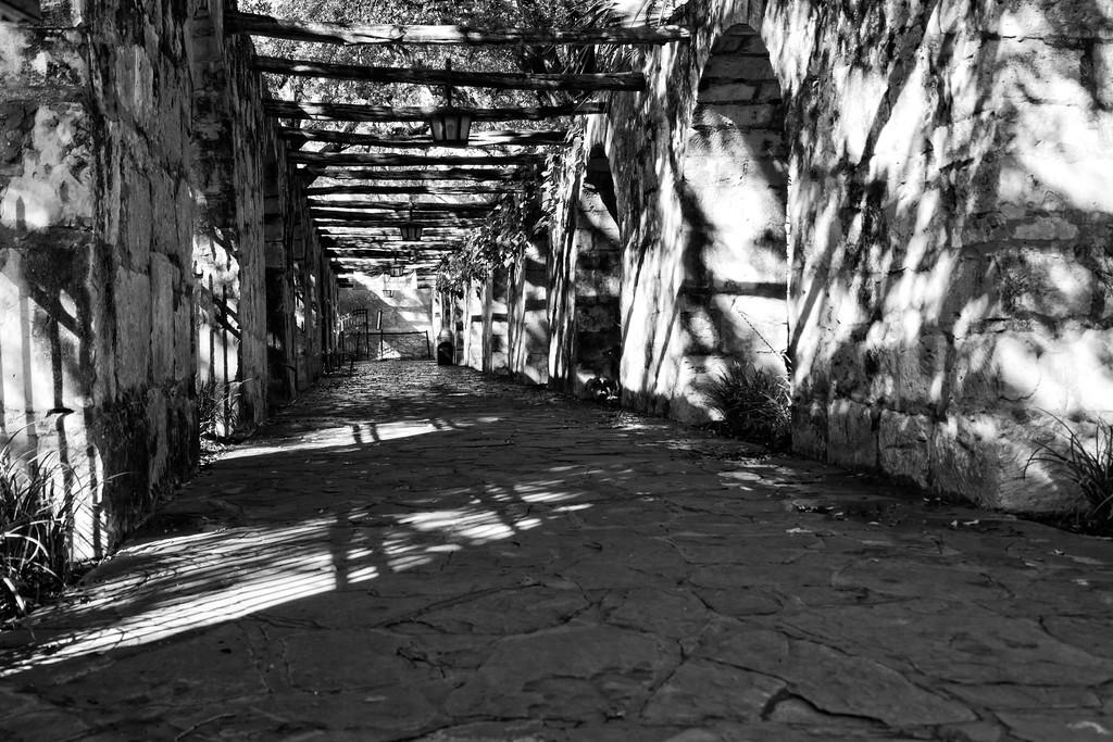 IMAGE: http://alfredomora.smugmug.com/Landscapes/General-Landscapes/i-H77SrH5/0/XL/20120218-San-Antonio-trip-008-XL.jpg