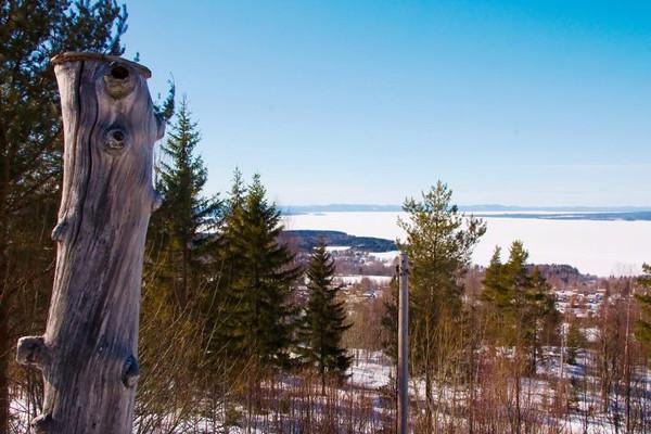 View over Siljan(1).jpg