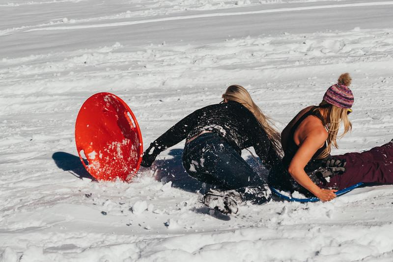 snowMLK-2513.jpg