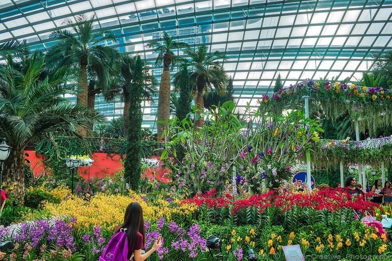 2018-07-18_FunWithFamily@GardensByTheBay_SingaporeSG_20-HDR.JPG