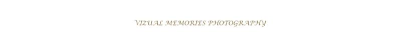 VMPLLC 2016 Watermark 25 font.png