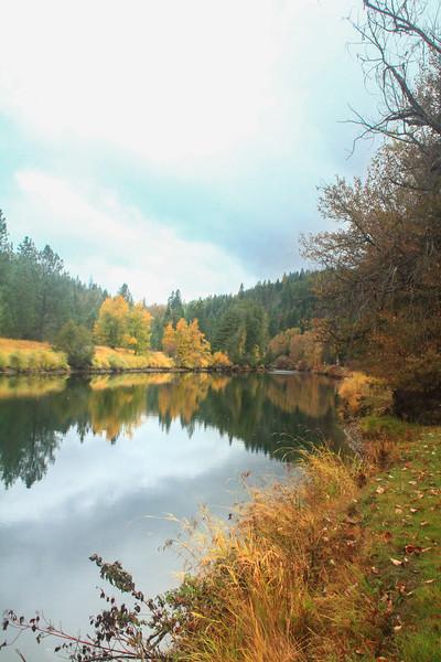 fall 2019 st maries river-1657.jpg