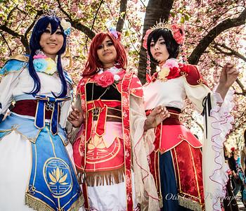 Sakura Matsuri 2016: Cherry Blossom Festival