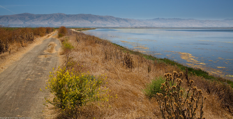 Biking Alviso Slough Trail 1160.jpg