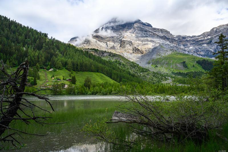 Lac de Derborence #2
