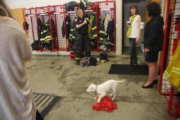 Bellevue Firefighter Shoot