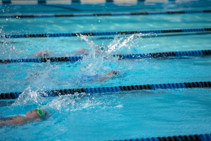 lcs_swimming_kevkramerphoto-285.jpg