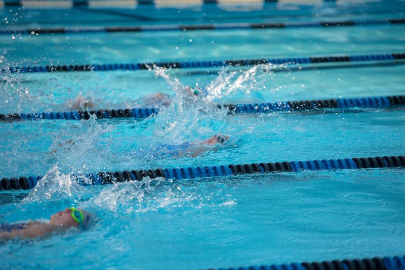 lcs_swimming_kevkramerphoto-285.jpg