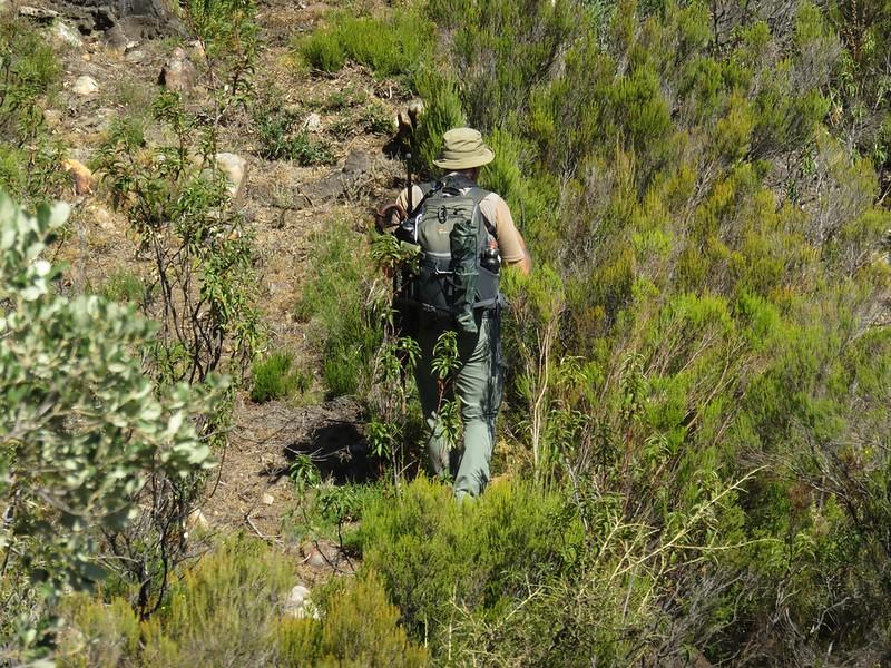 200926 - Jornada coleopteros SGHN - José de Algeciras en el campo.JPG