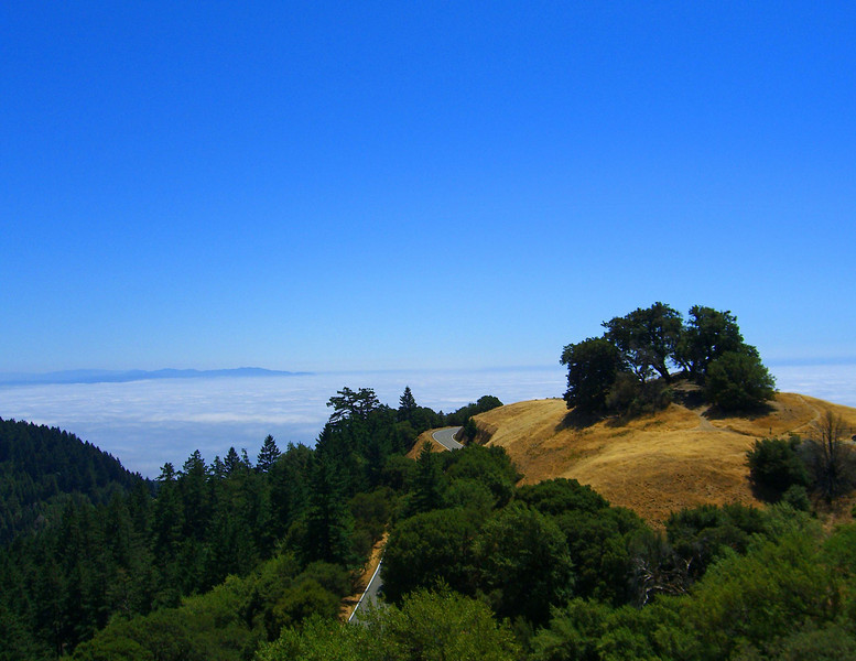 The view towards the ocean from Mt. Tamalpais State Park