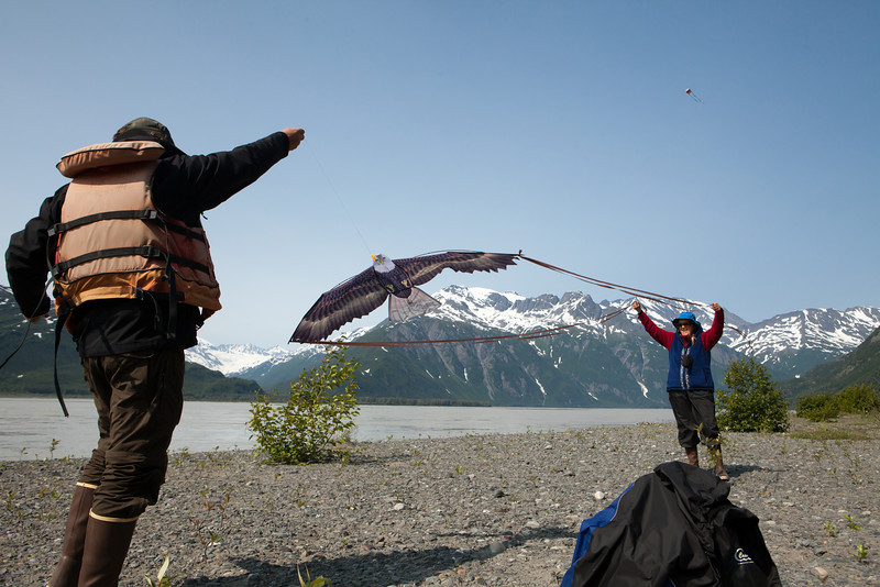 Alaska Copper River-8839.jpg