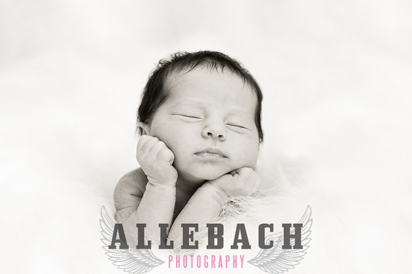 Elle Newborn Photography