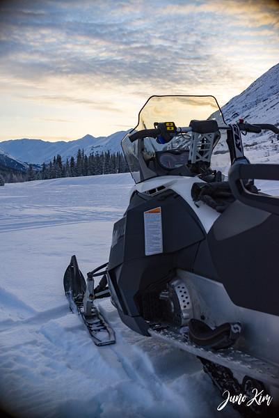 2019-02-09 Alaska Wild Guides-6106309-Juno Kim.jpg