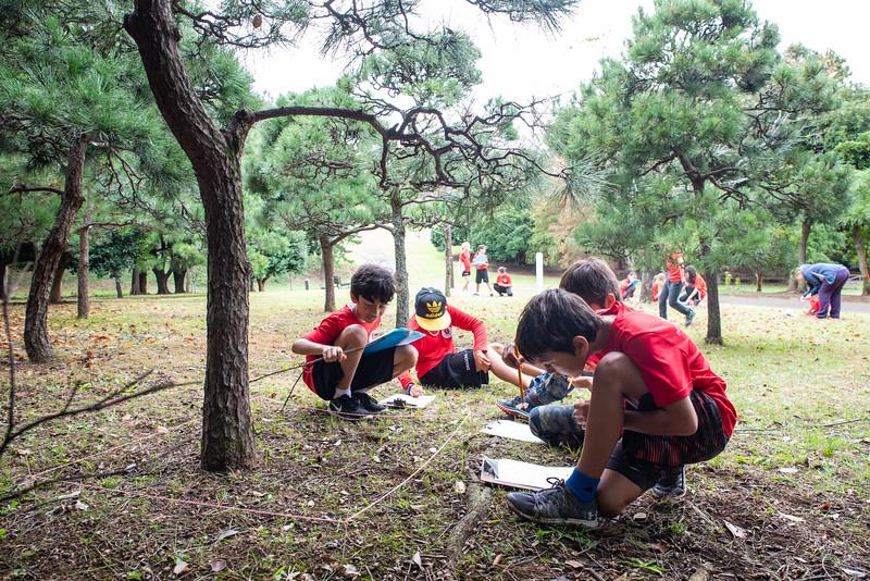 Grade 4-Negishi Park - Nature Observation-ELP_2845-2018-19.jpg