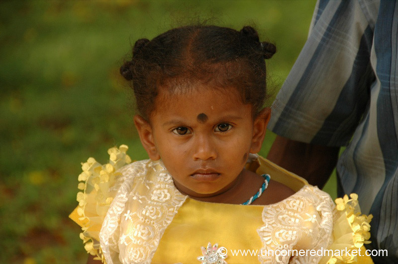 You Lookin' At Me? - Pondicherry, India