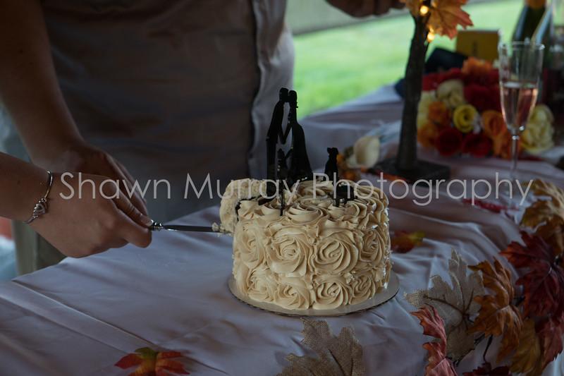 1087_Megan-Tony-Wedding_092317.jpg