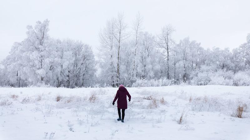 2019 Anna Alaska