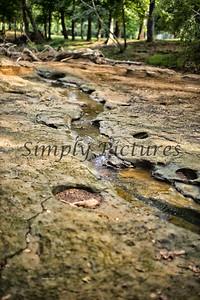 Banita Creek  (23)